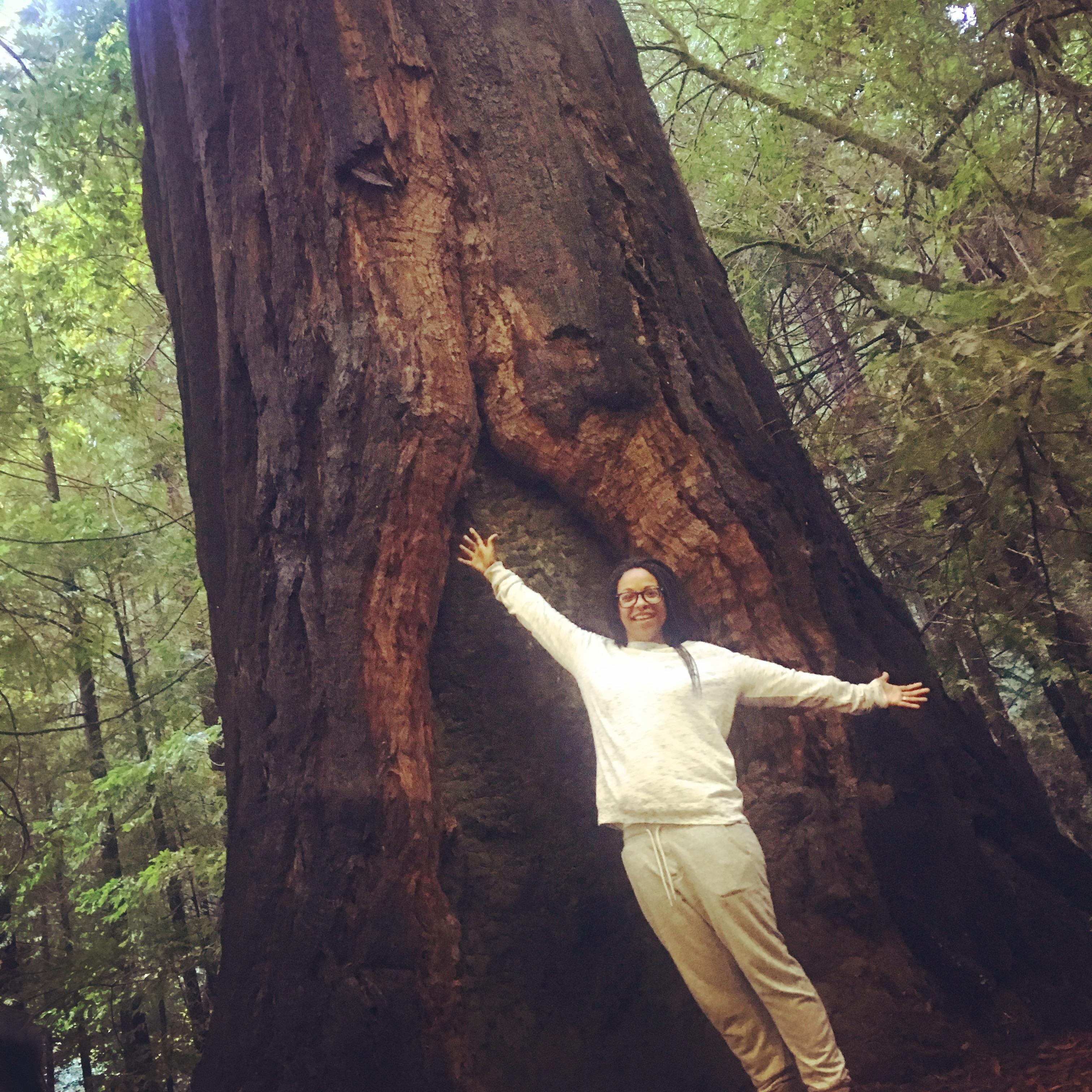 FM Erinn Tree